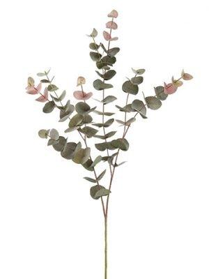 """40"""" Eucalyptus SprayGreen Burgundy"""