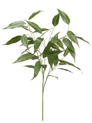 "39"" Eucalyptus Spray  Green"