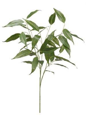 """39"""" Eucalyptus SprayGreen"""
