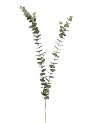 "61"" Eucalyptus Spray  Green Gray"