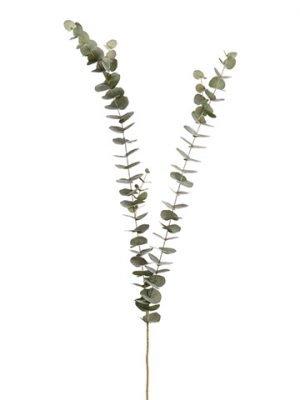 "61"" Eucalyptus SprayGreen Gray"
