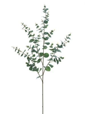 "45"" Eucalyptus Spray  Green Gray"