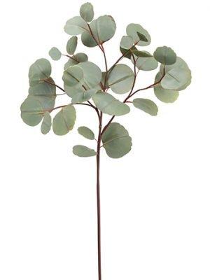 """26"""" Eucalyptus SprayGreen"""