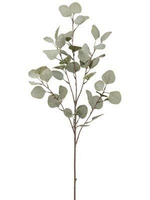 """36.5"""" Eucalyptus SprayGreen"""