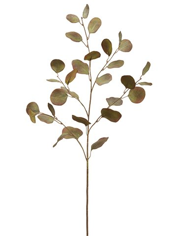 """35"""" Eucalyptus Spray Green Brown"""