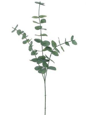 "31"" Eucalyptus SprayGreen Gray"