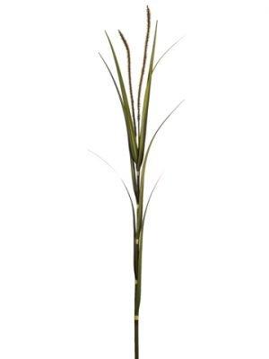 """60"""" Foxtail Grass Spray Fall"""