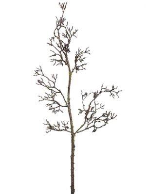 """25"""" Lichen Twig BranchGreen Brown"""