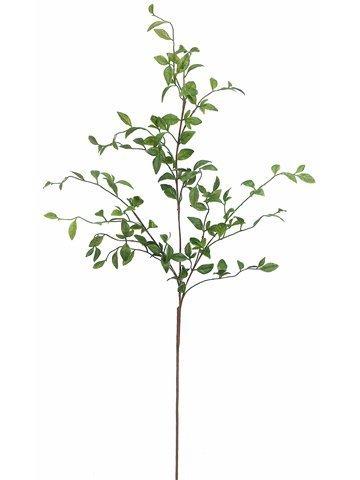 "42"" Nandina Leaf SprayGreen"