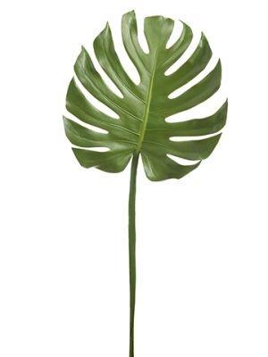 "41"" Monstera Leaf SprayGreen"