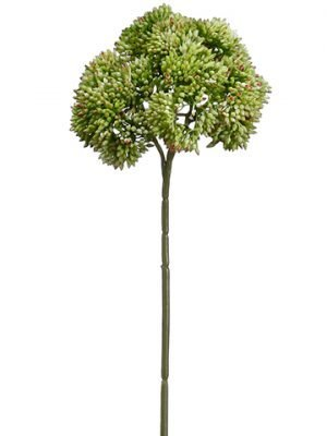 "14.5"" Sedum Stem x3 Green Pink"