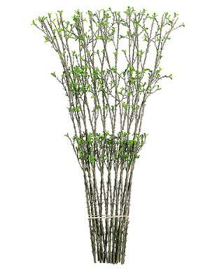 "30"" Twig Spray with Mini Leafon LatticeBrown Green"