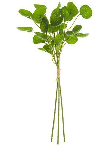 "15"" Watercress Bundle  Green"