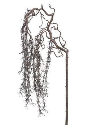 """65"""" Willow Hanging SprayBrown"""