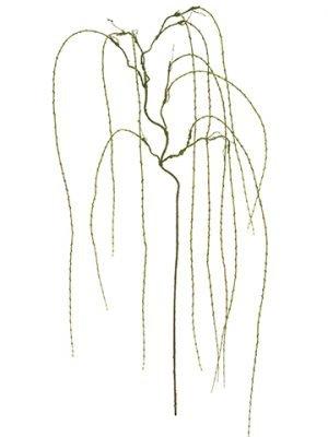 "90"" Willow Hanging SprayMoss Green"