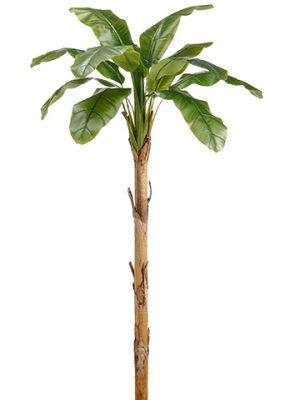"""101"""" Banana Leaf PlantGreen"""