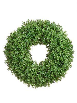 "21"" Boxwood Wreath Green"