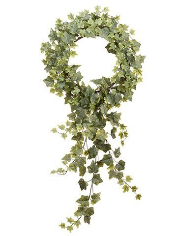 "22""Dx36""L Hedera Ivy Wreath With Trailer Frosted Green"