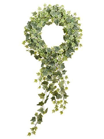 """22""""Dx36""""L English Ivy WreathWith TrailerVariegated"""