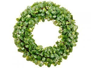 "23"" Pittosporum Wreath Green"