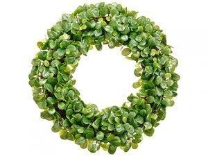 """23"""" Pittosporum Wreath Green"""