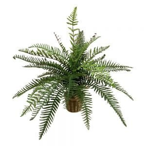 Real touch river fern floor plant inbasket