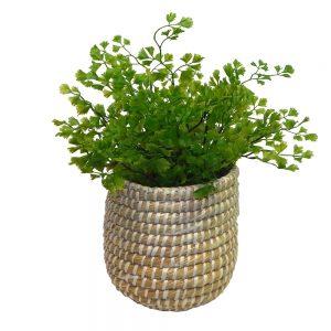 Adorable faux maiden fern foliage in rustic modern sea grass basket