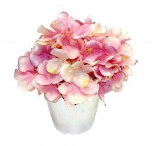 Graceful hydrangea insilver vase