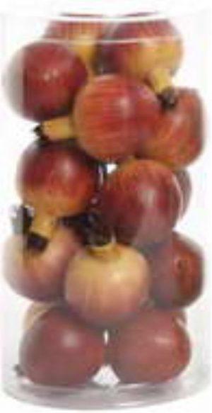 Pomegranate in Tube