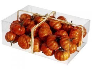 """2.5""""H x 5""""W x 7""""L AssortedPumpkin in Acetate BoxOrange"""