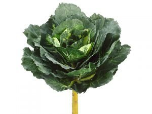 """16"""" Real Touch Cabbage Spray Two Tone Green"""