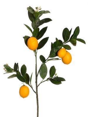"""32"""" Lemon Branch Yellow"""