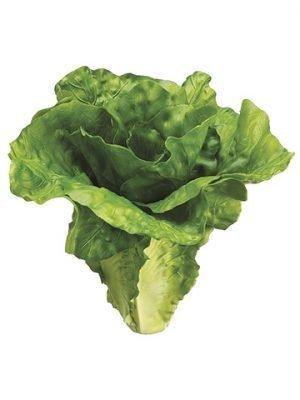 """6"""" Lettuce Green"""