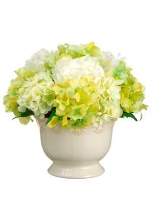 "9""H x 10""W x 10""L Hydrangea in Ceramic Pot Cream Green"