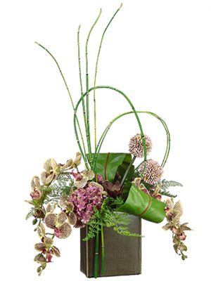 "31""H x 19""W x 13""L Phalaenopsis Orchid/Bird Nest Fern/Bamboo in Cube Container Orchid Green"