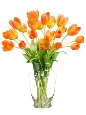 "22""H x 14""W x 19""L Tulip in Glass Vase Orange"