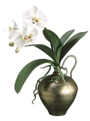 """17""""H x 7""""W x 13""""L PhalaenopsisOrchid in VaseWhite"""