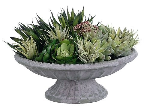 "9""H x 15""W x 15""L Echeveria/Agave/Sedum in Fiber Cement Green"