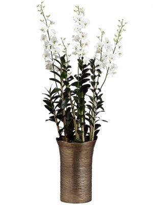 "62""H x 20""W x 20""L DendrobiumOrchid in Metal VaseCream"