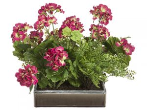 "16""H x 19""W x 26""L Geranium/Fern in Pot Beauty Green"