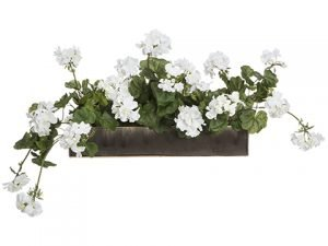 "16""H x 22""W x 35""L Geranium in Long Planter White Green"