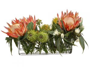 "13""H x 15""W x 24""L Protea/Ecualyptus in Glass Vase Orange"