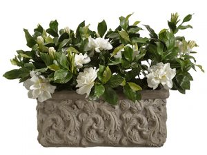 "17.5"" Gardenia in Stone Planter Cream"