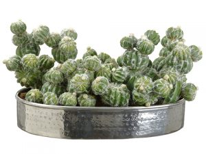 "10.5""H x 12""W x 19""L Cactus in Silver Plate Green"