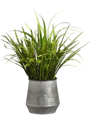 "33"" Reed Grass/Sedum in Metal Container Green"