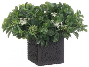 "18""H x 22""W x 20""L Privet Bloom/Berries In Cement Pot Green"