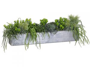 "12""H x 33""W x 13""L Aeonium/Cactus Mix In Aluminum Rectangular Planter Green"
