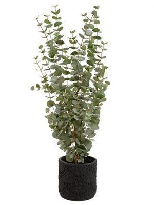 "45""H x 21""W x 22""L Eucalyptus inPlanterGreen"