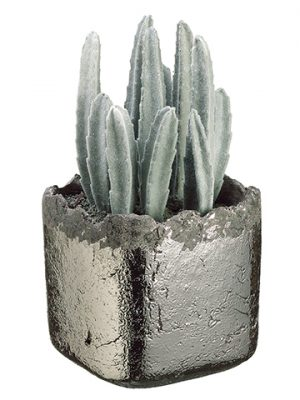 "9.5"" Peruvian Cactus in Ceramic Vase Gray"