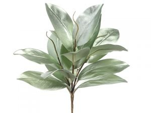 "15"" Magnolia Leaf Spray Green"